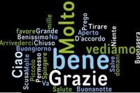 Prevodilac i sudski tumač za italijanski jezik
